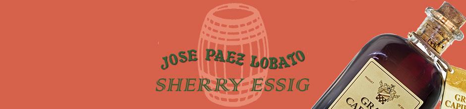 Banner 5 - Sherryessig Lobato
